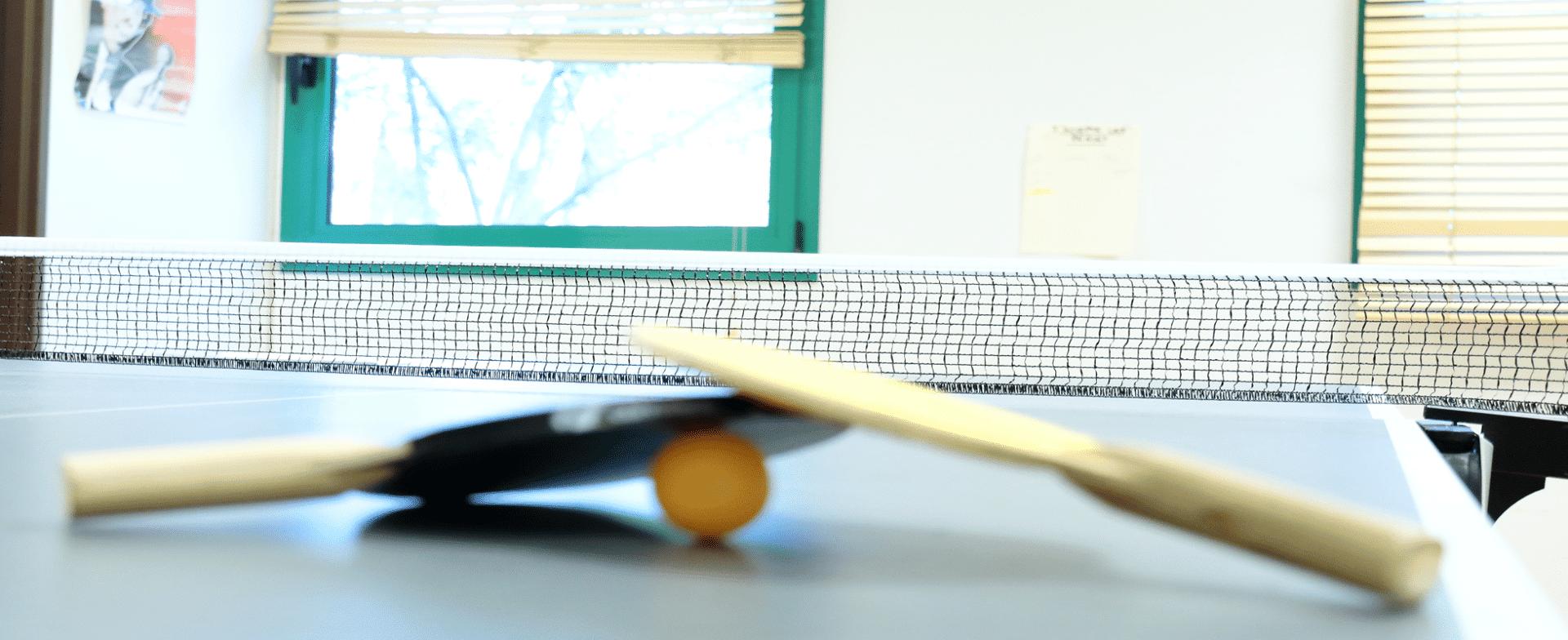 SESSAD De Pissaloup table de ping pong