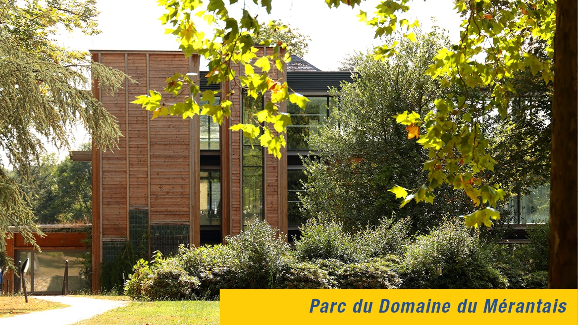 Cinquantenaire de l'Association IES - Parc du Domaine du Mérantais